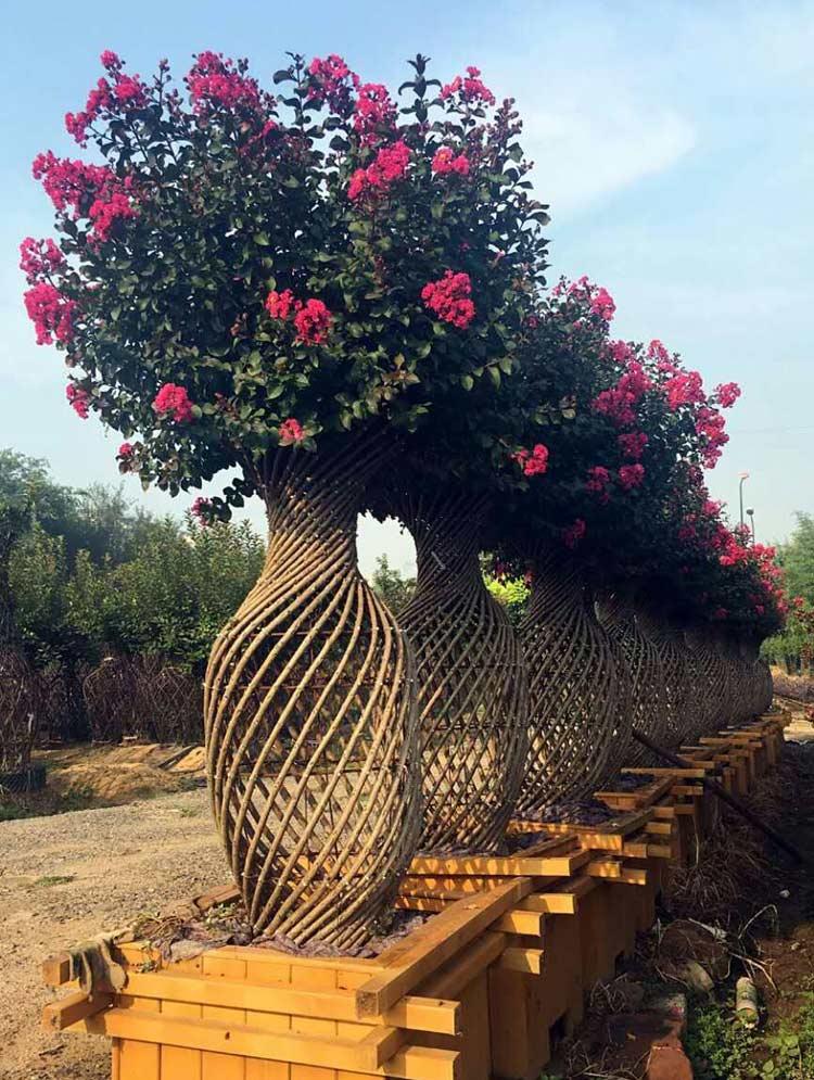 欧式园林花瓶图片